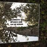 er+sie-spiegel_SFS2435